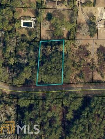 Lot for Sale in Sylvan Heights of Sylvania, GA