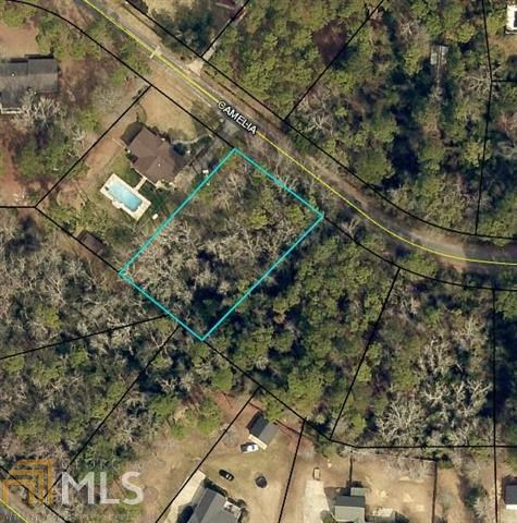 Residential lot for Sale in Sylvan Heights of Sylvania, GA