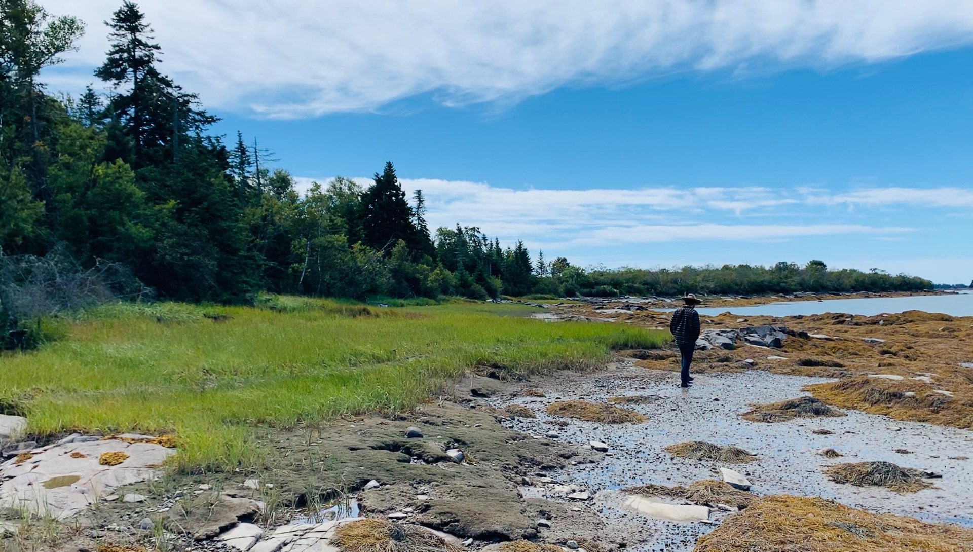 Oceanfront Land Lot for Sale in Maine