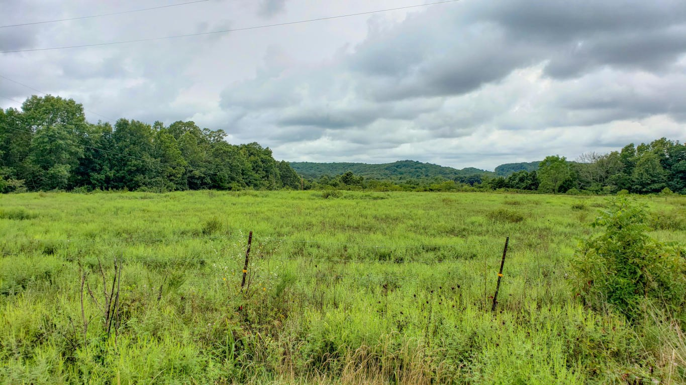 Vacant Land for Sale in Southern Missouri