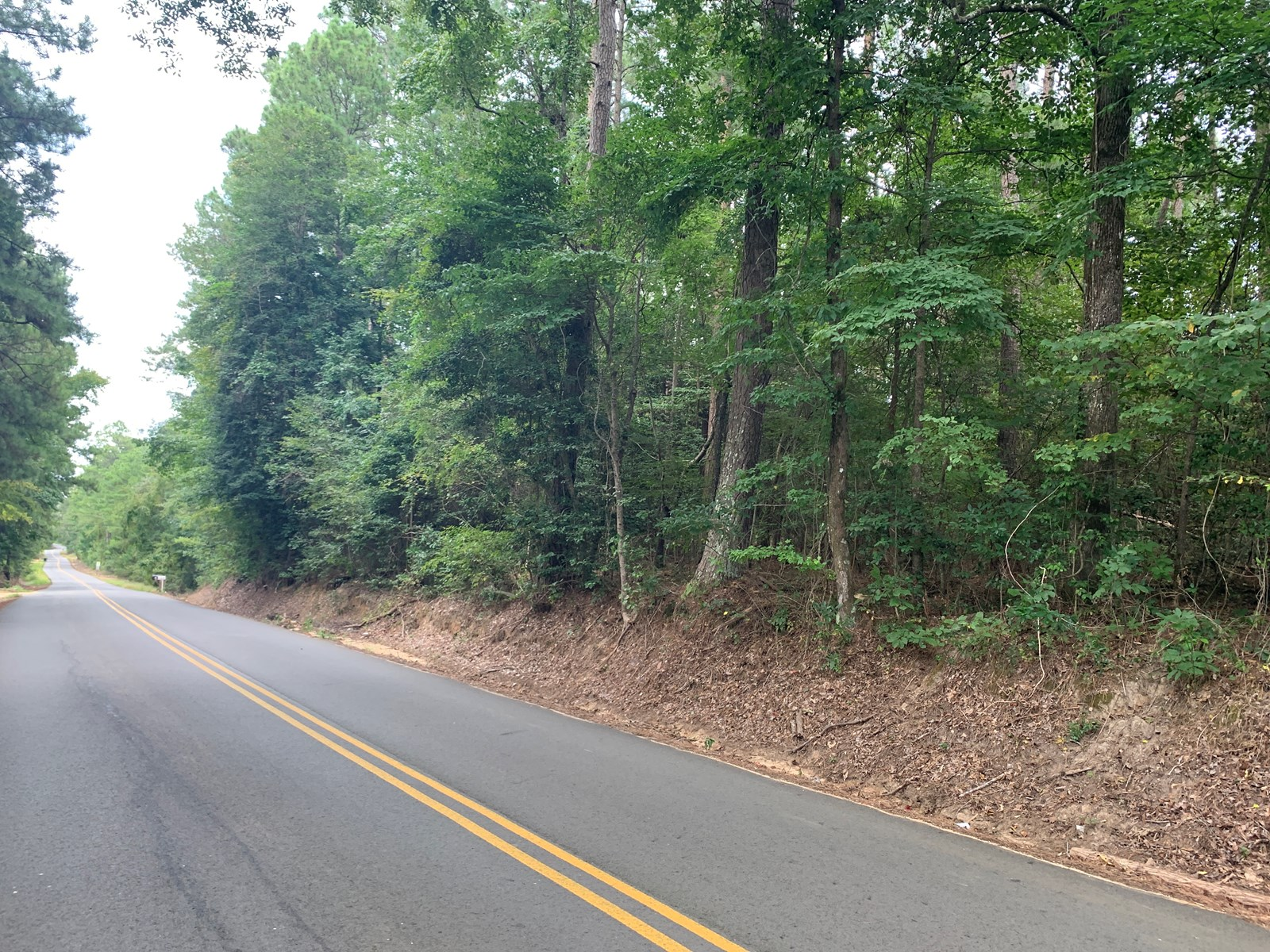 Pine Land w/ Utilities near Parkers Chapel, AR for Sale