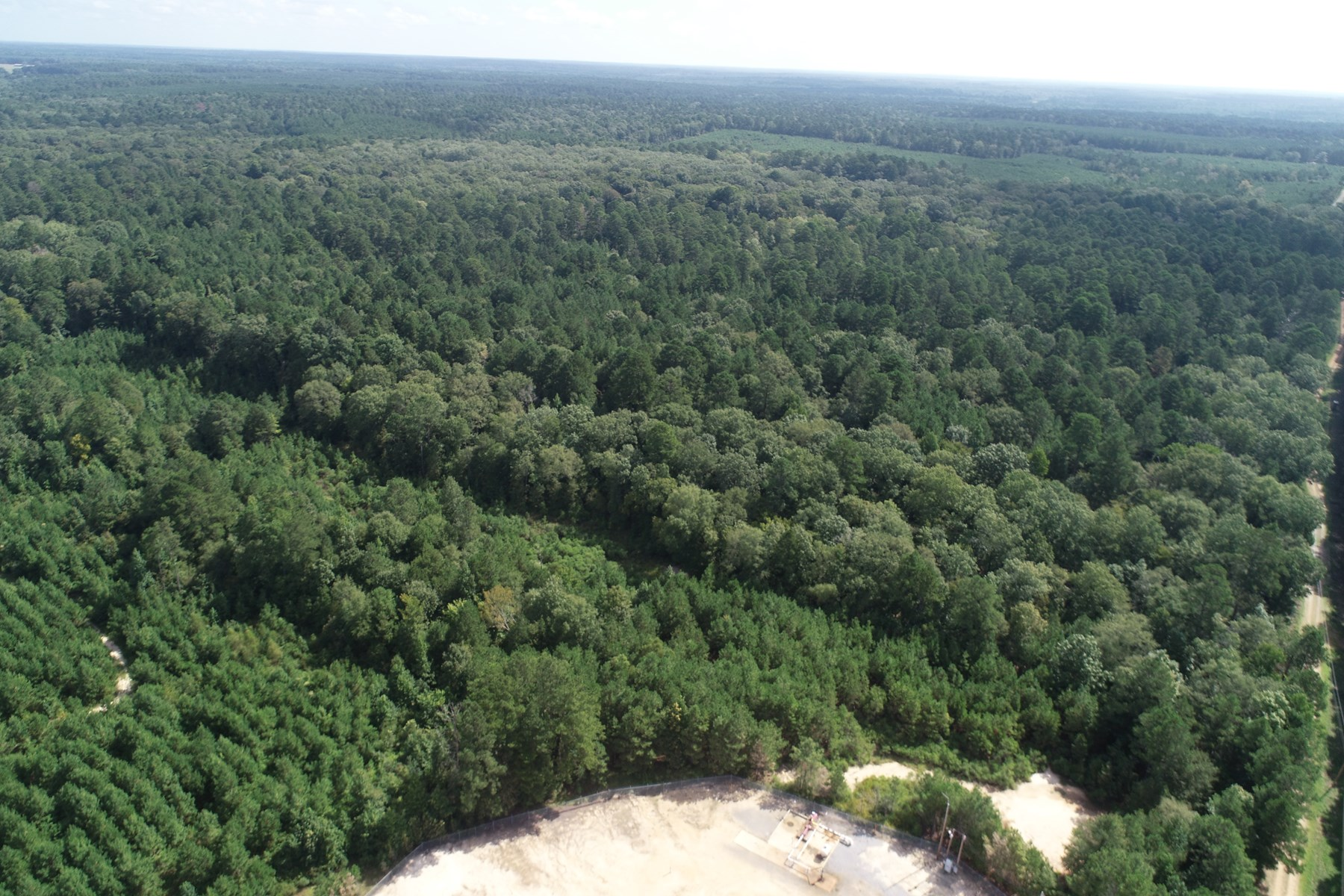 Diverse Recreational Hunting Land for Sale in Union Co., AR
