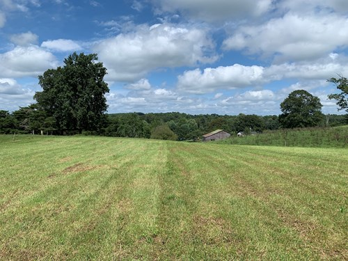 CATTLE/HORSE FARM/PASTURE/HUNTING/BLDG. SITES - LIBERTY, KY.