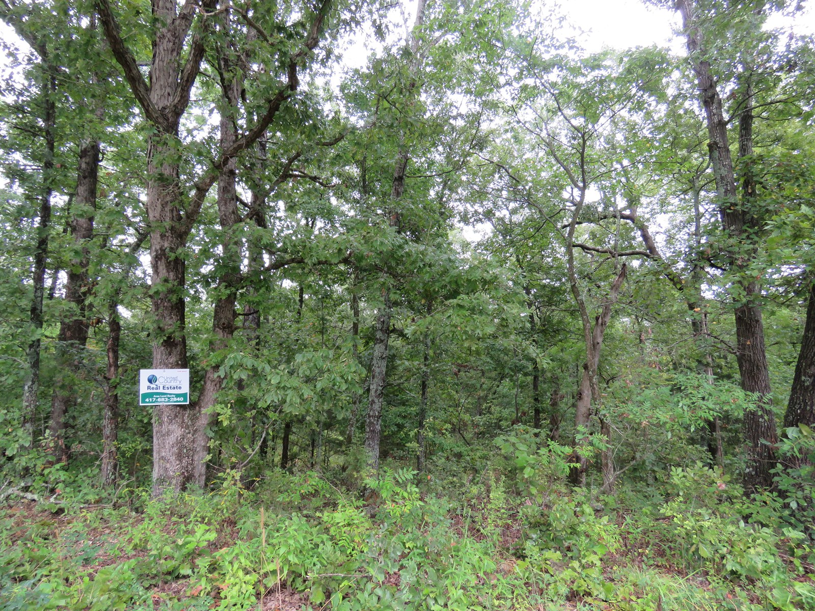 Land for sale in Ozark County Missouri