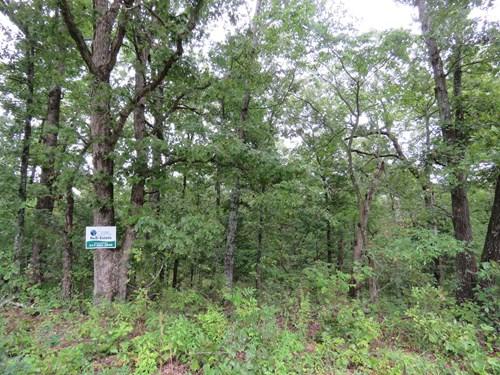 Land for sale in Ozark County Missouri