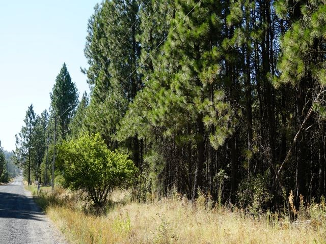 2.7 Buildable Acres in Cheney WA