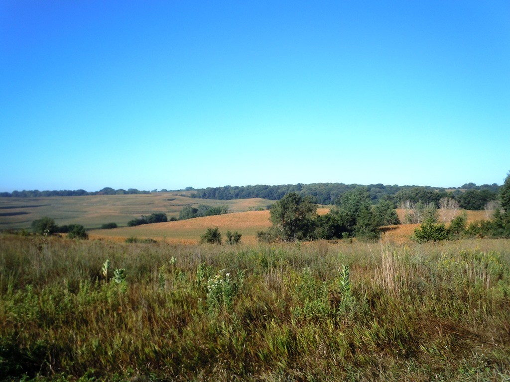 101 ACRES FOR SALE MISSOURI VALLEY, IOWA