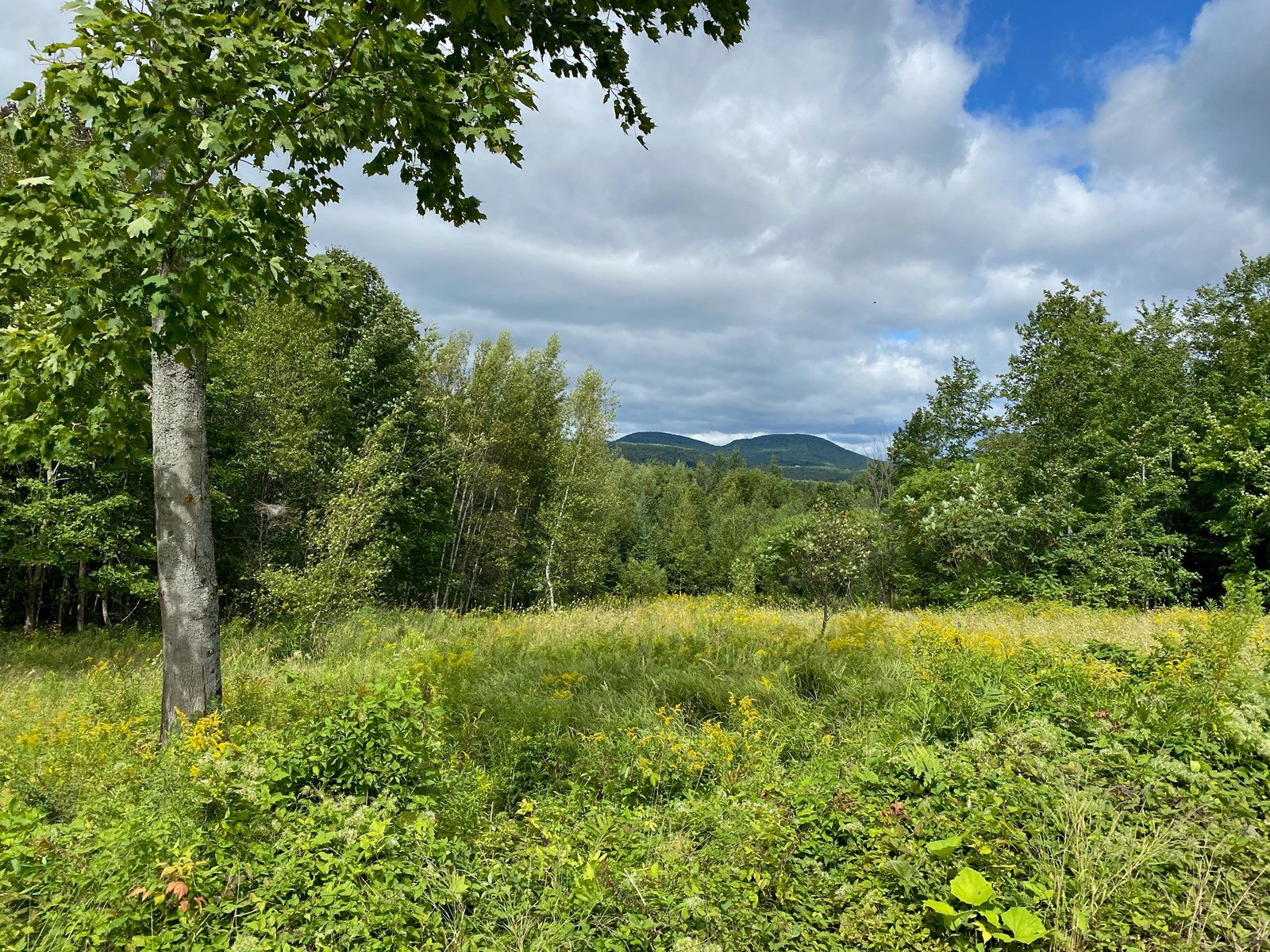 Land for Sale in Farmington, Maine
