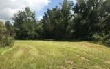 10 ACRES IN FORT WHITE