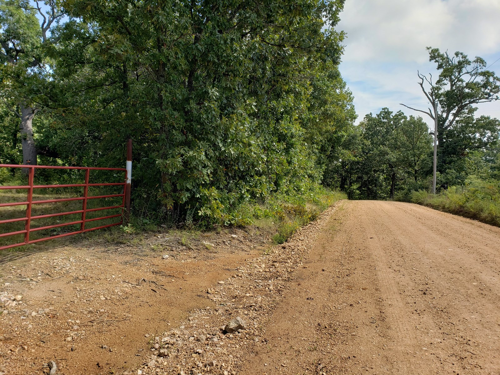 Hunting Land for Sale in South Central Missouri