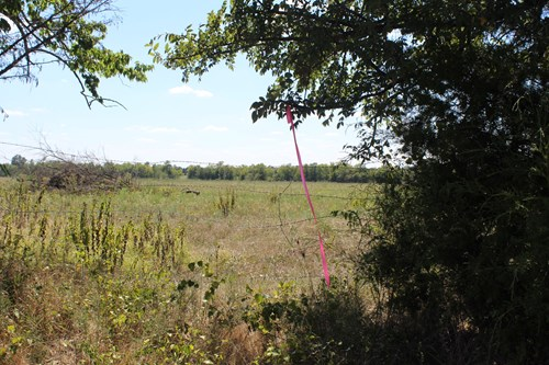 PASTURE LAND/ RED RIVER COUNTY, TEXAS