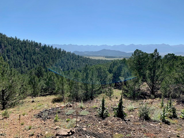 Four Large Mountain Lots in Gated Community