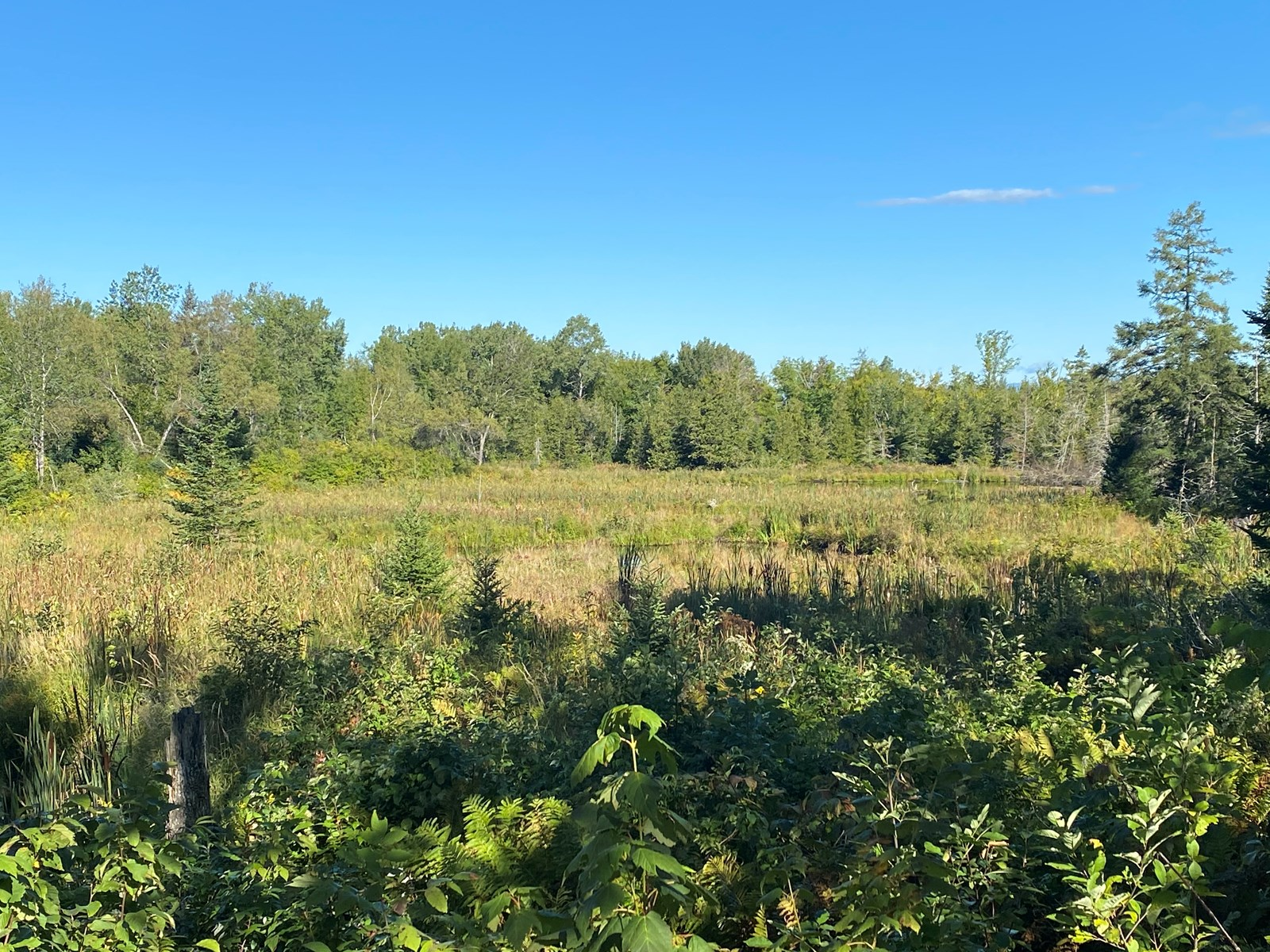 Maine Hunting and Recreational Land For Sale