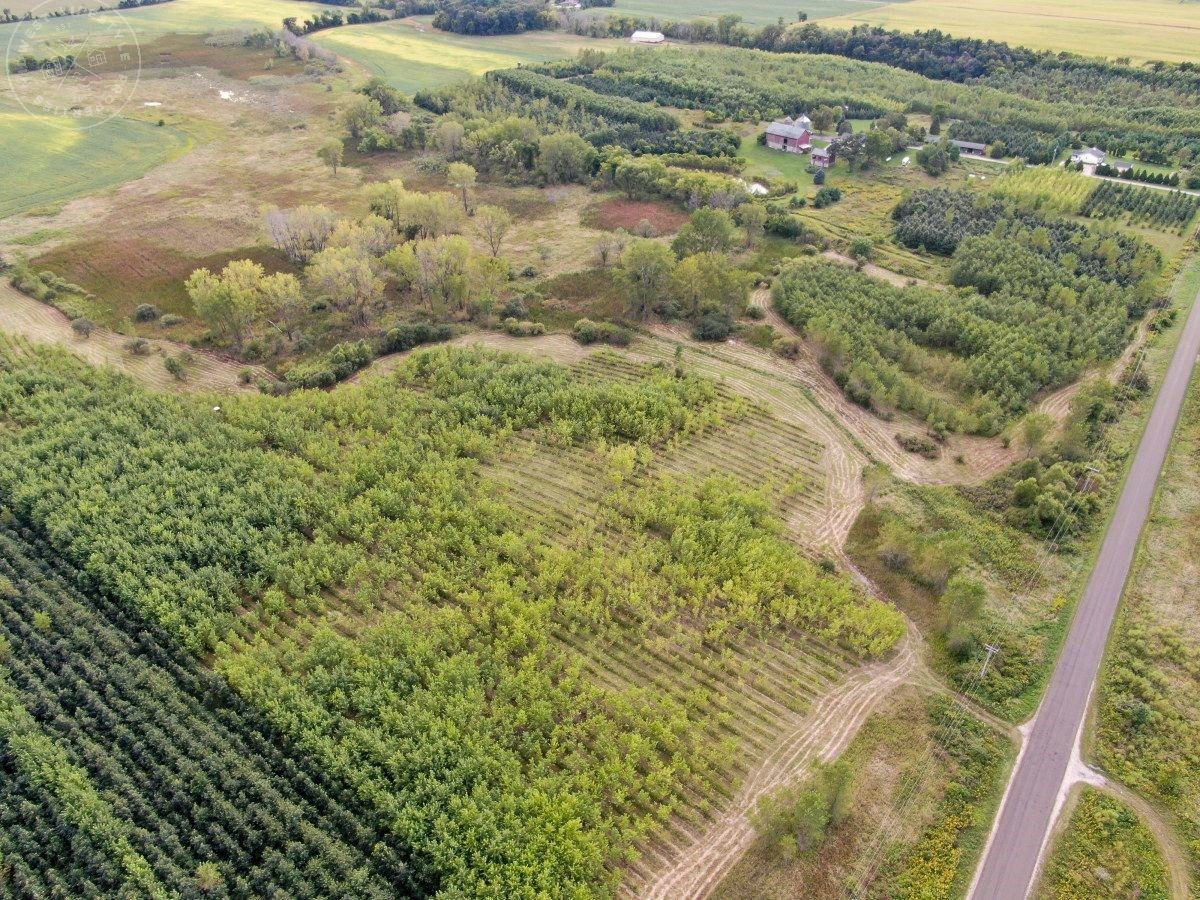 33 Acres of Buildable, Hunting land Dodge County