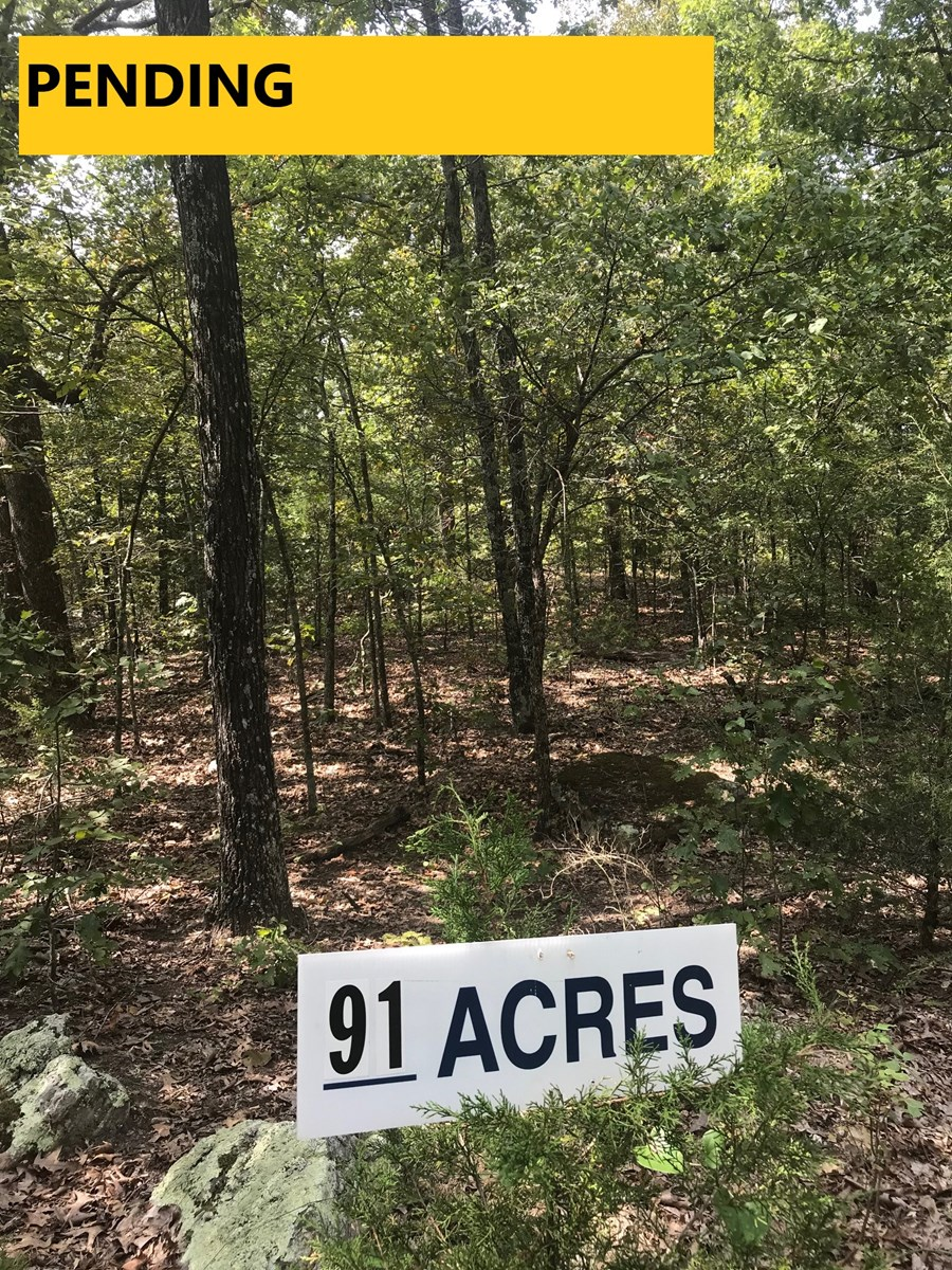 LIVE LIFE LARGE WITH 90+ ACRES NEAR TOWN
