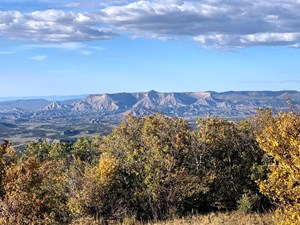 HUNTING AND MOUNTAIN RECREATION ON 35 ACRES IN SOUTHWEST, CO