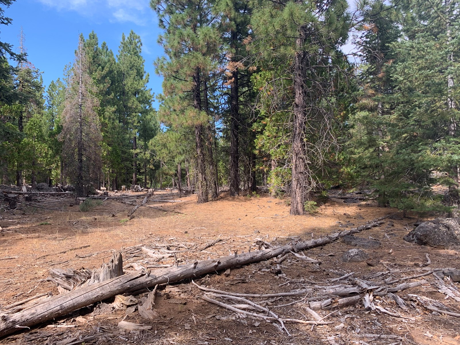 2+ Acres of Vacant Land for Sale!