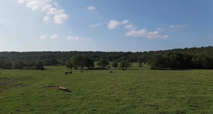 Recreational Deer & Cattle Ranch For Sale In Stuart Oklahoma