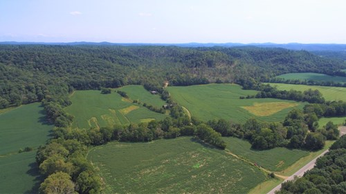 LARGE ACREAGE-HUNTING-CROPLAND/PASTURE - LIBERTY KENTUCKY