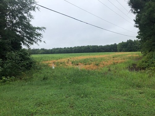 Commercial Land In Southern VA