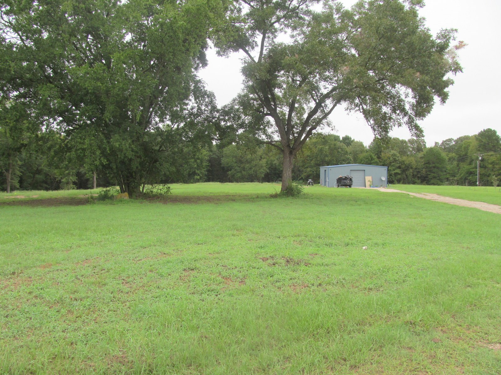 ALMOST 17 EAST TEXAS ROLLING ACRES + SHOP - WINNSBORO, TEXAS