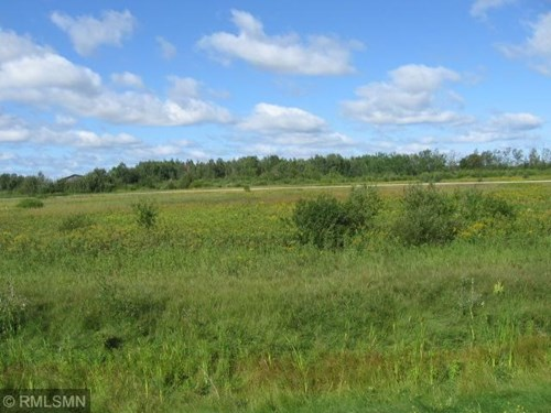 Building Lots for Sale Near Lake of the Woods Minnesota