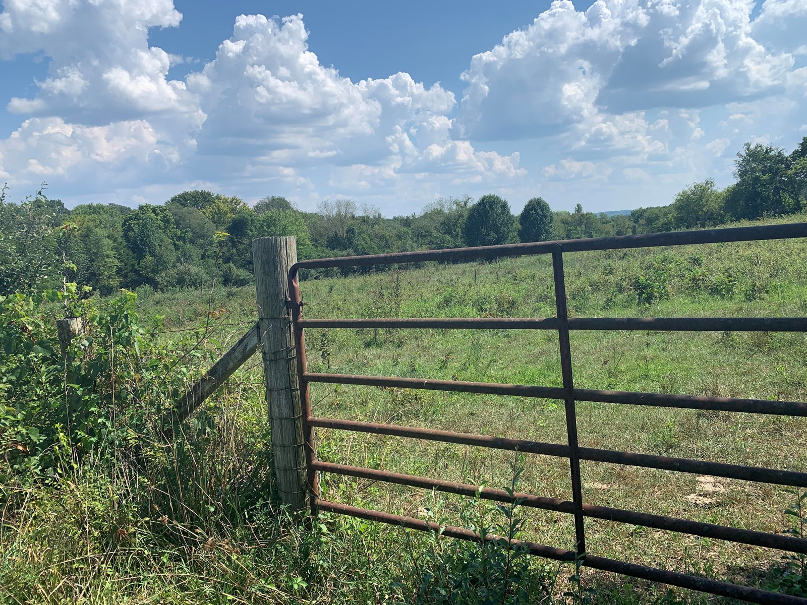 Texas County Acreage For Sale in City Limits of Cabool, MO