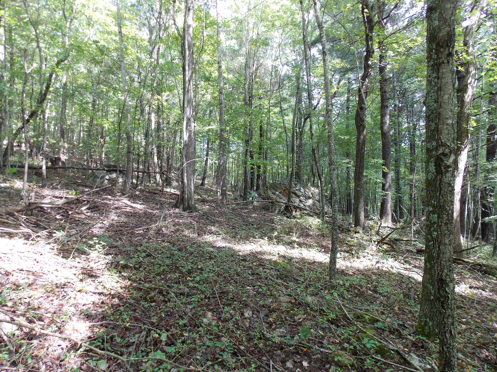 Land for Sale in Riner VA