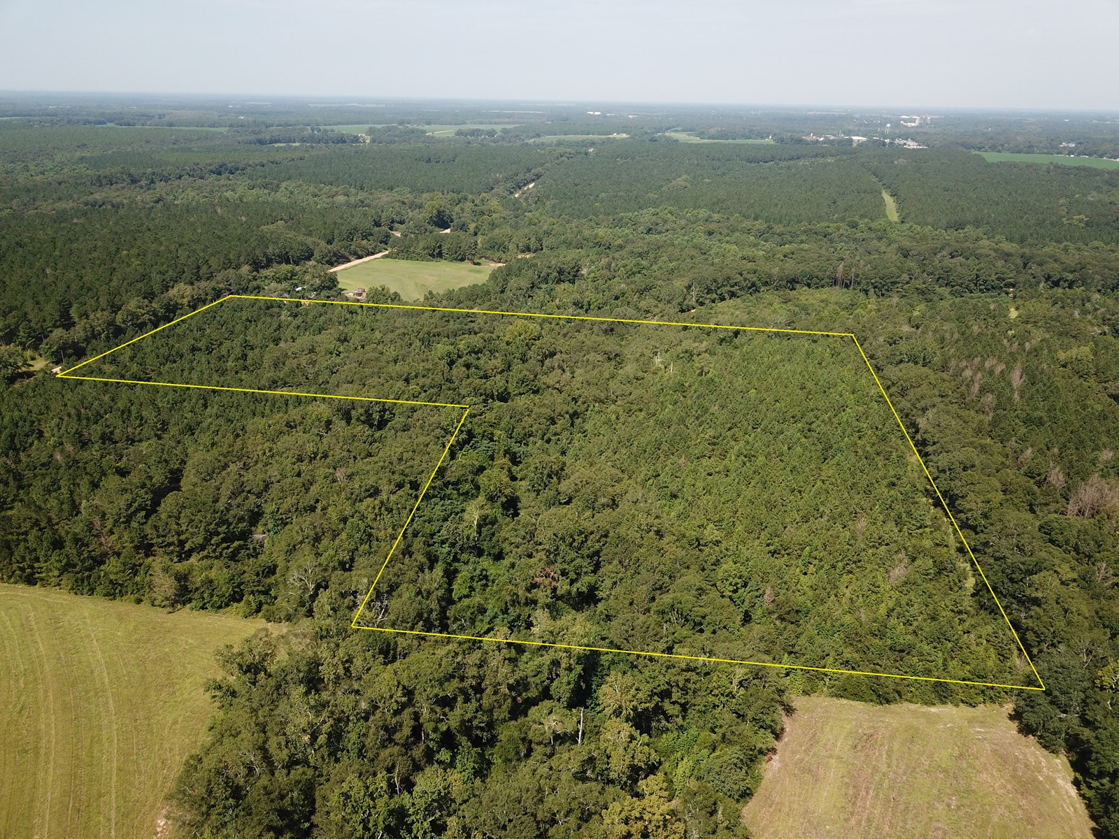 8.19 Acres for sale Coe Road, Hartford, AL