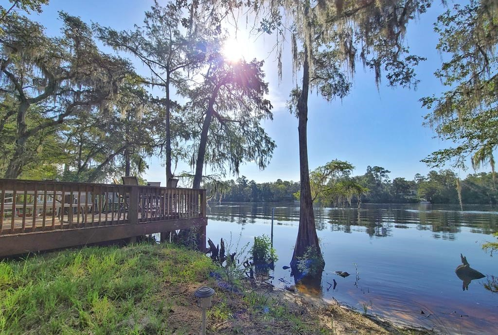 Waterfront Property on the Suwannee River