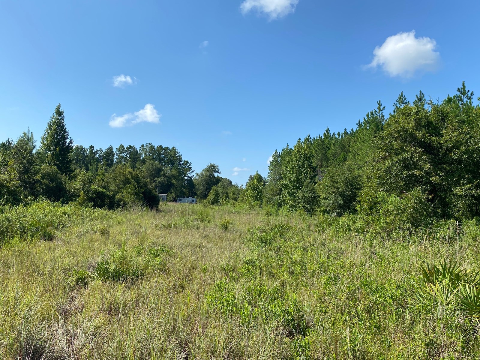 40 ACRE PARCEL WITH WELL, SEPTIC & POWER POLE IN NORTH FL