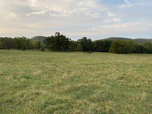 FARM LAND IN ARKANSAS -33 AC