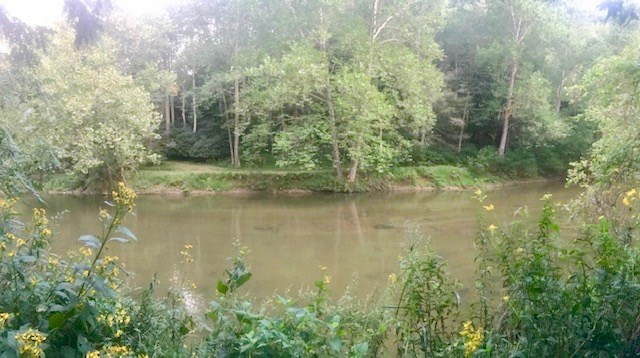 Land for Sale on The Little River in Floyd VA