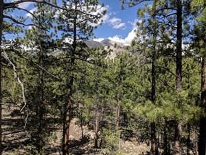 ACREAGE LAND COLORADO MOUNTAIN VIEWS CHAFFEE COUNTY FOR SALE