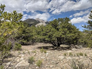 MT PRINCETON CHALK CLIFF LAND FOR SALE CHAFFEE COUNTY COLO.