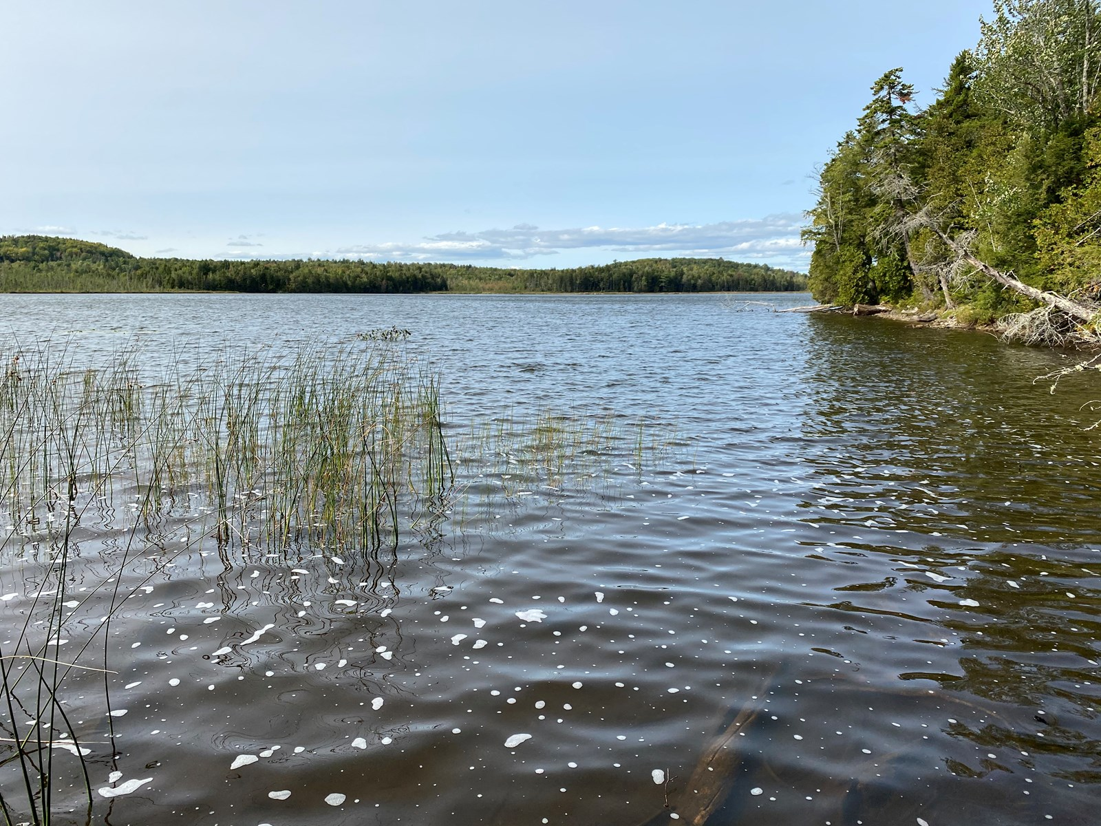 Waterfront Lot for Sale in Carroll Plt, ME
