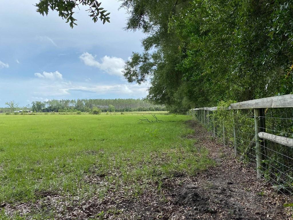 PASTURELAND FOR SALE IN BELL, FL