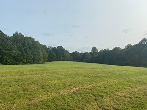 LAND FOR SALE IN LAWRENCEBURG TENNESSEE