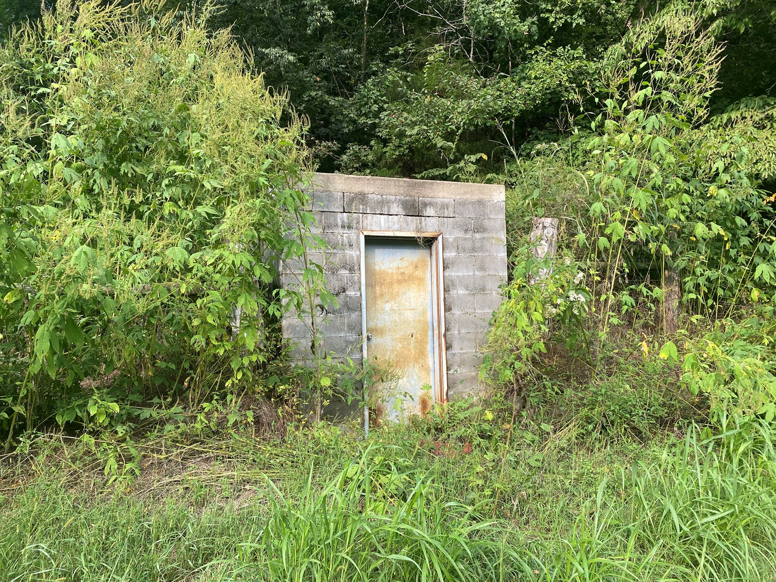 Lot for sale in Tn with septic, spring water, & electricity.