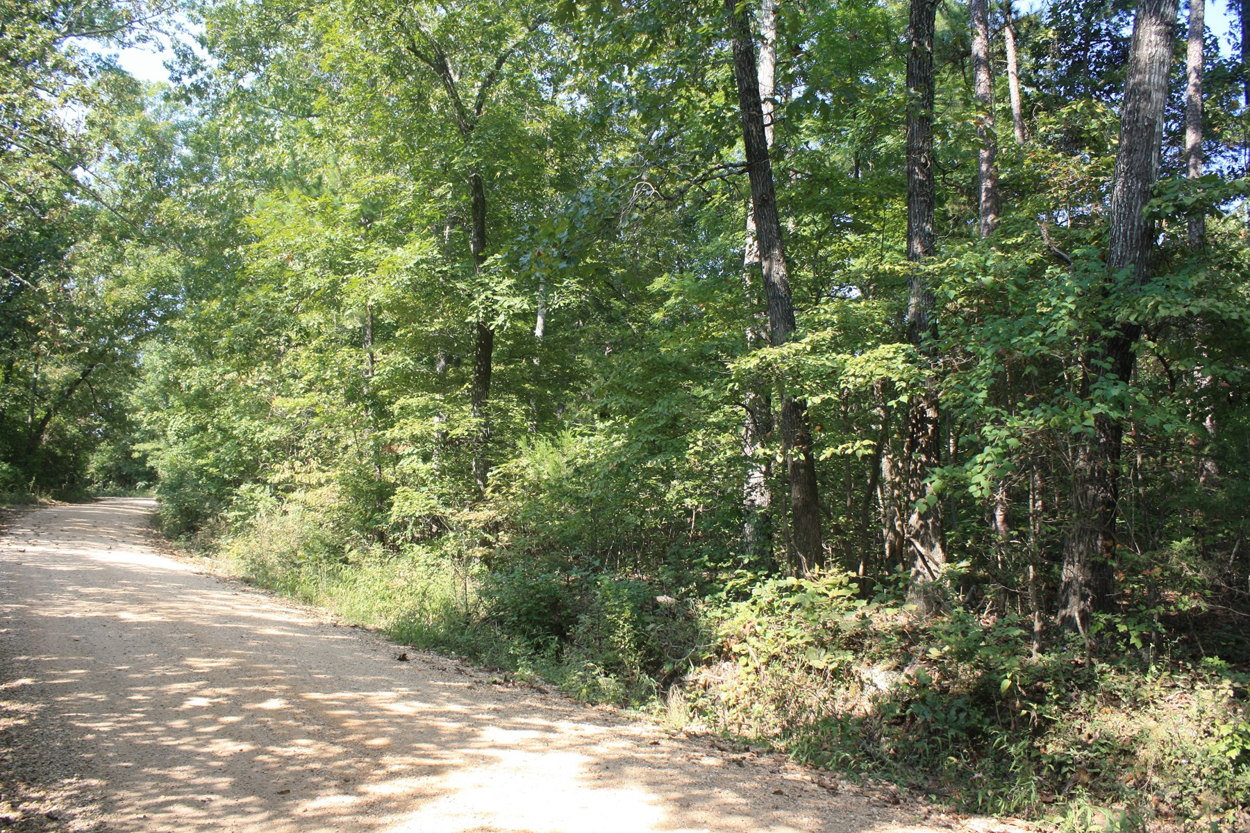 Piedmont MO Land For Sale