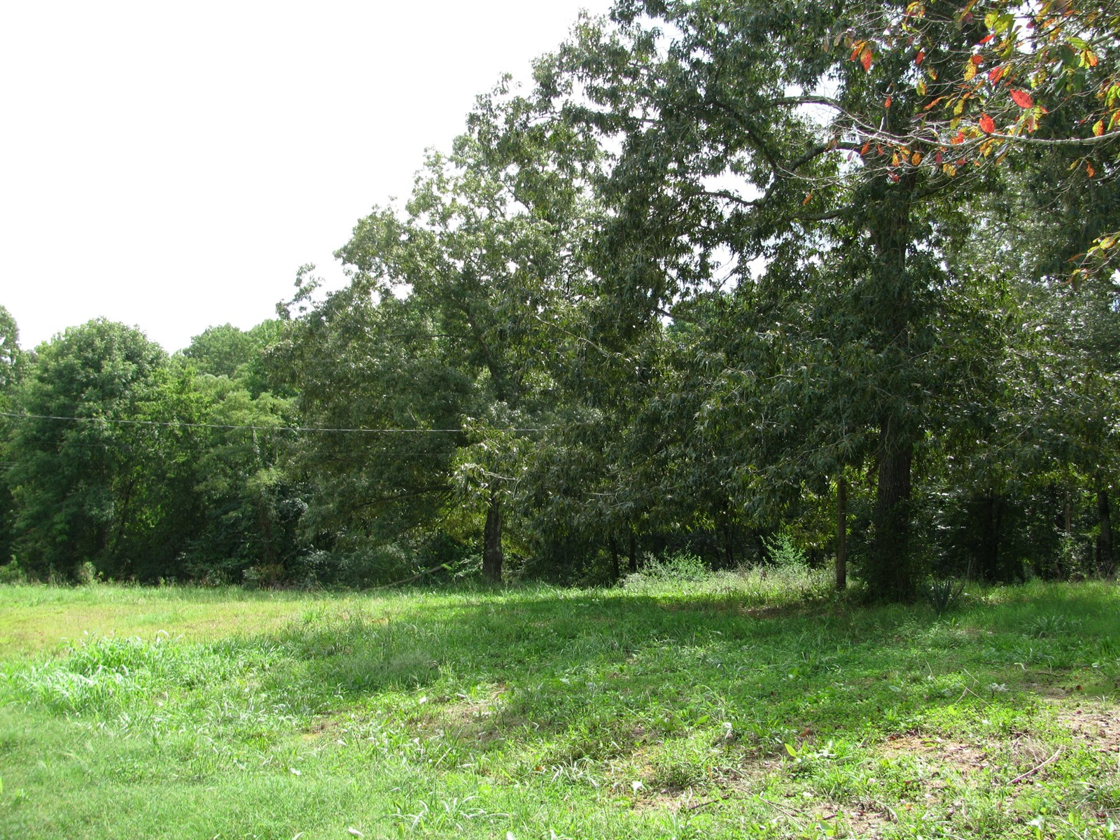 COUNTRY LAND FOR SALE IN TN, OLD TRAILER, READY TO BUILD ON