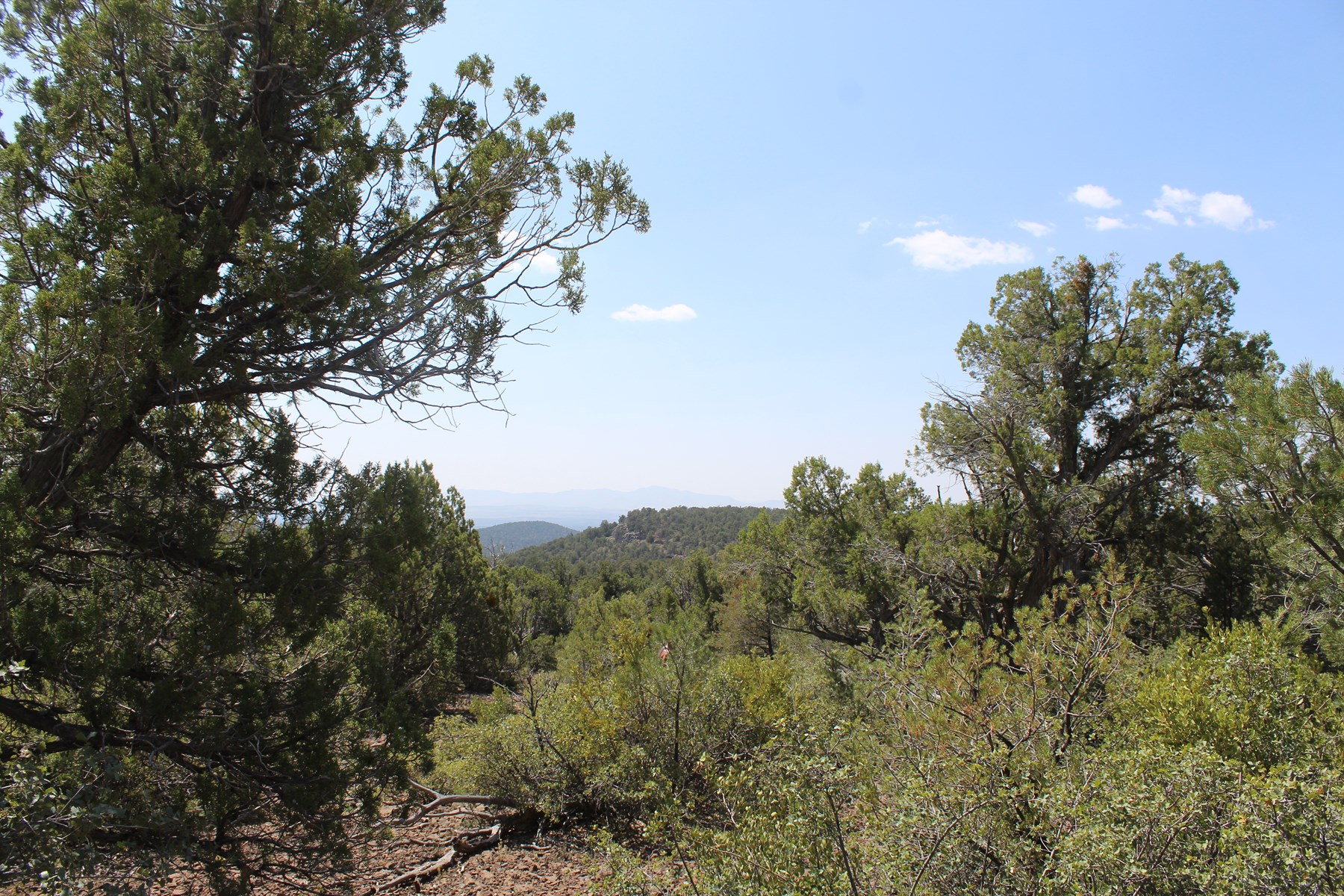 Two Parcels of Land bordering State Land for Sale AZ