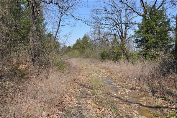 BUILDING SITE OVERLOOKING POTEAU FOR SALE