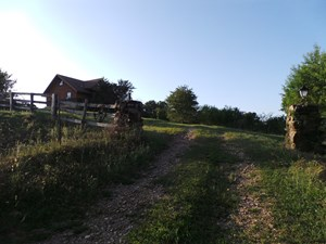 HOME/ACREAGE HIGH ON THE HILL