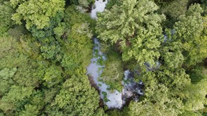 RECREATIONAL & HUNTING LAND FOR SALE GILMER UPSHUR COUNTY TX