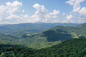 MOUNTAIN LAND-LONG RANGE VIEWS W/ HOMESITES NEAR ASHEVILLE