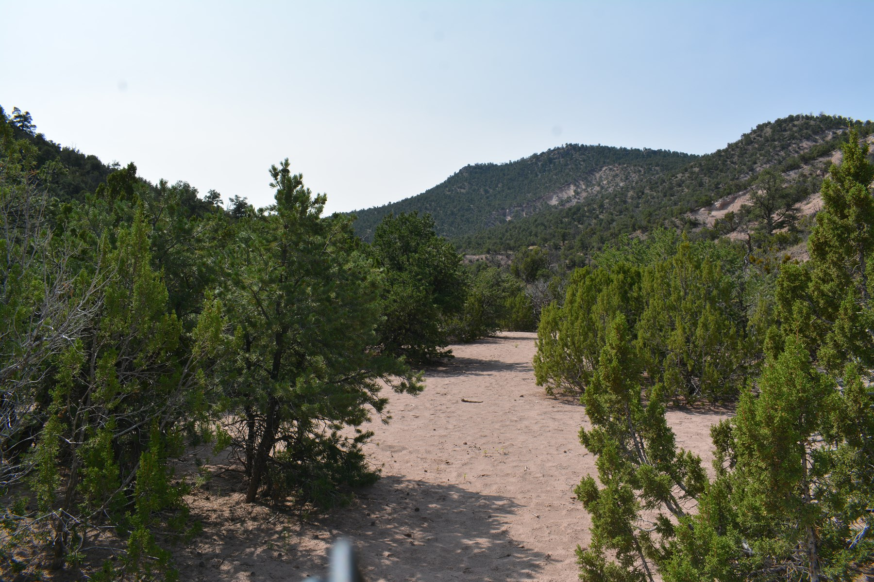 United Country Mike Krieg Mountain off grid land for sale