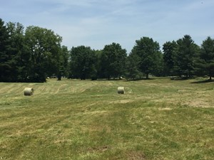 KY LAND FOR SALE