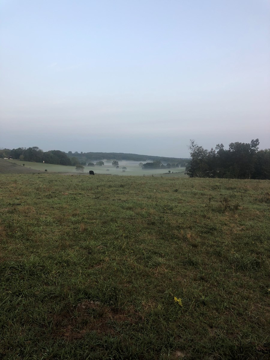 Farm for Sale in South Central Missouri - Howell County