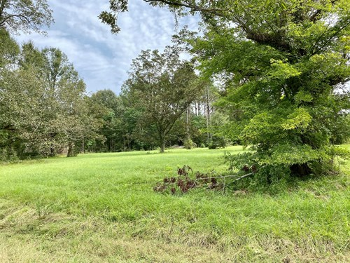 SOUTH MONTGOMERY HOMESITE WITH AWESOME HUNTING